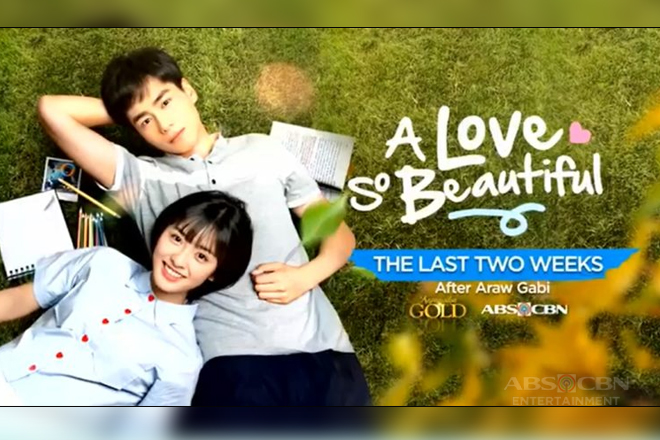 "Zoey and Ken become official in last two weeks of ""A Love So Beautiful"""